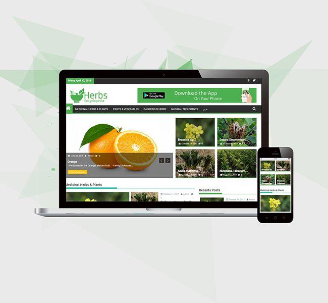 E-STEPS | www.herbsencyclopedia.info